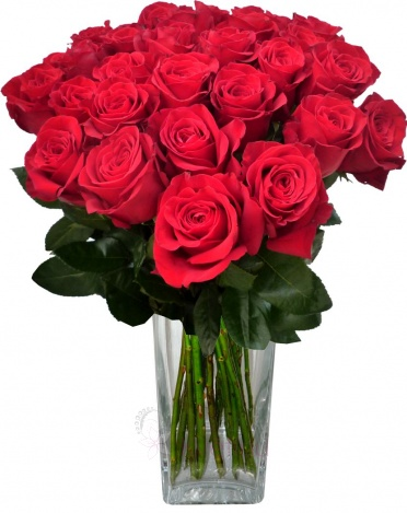Bouquet of roses - roses