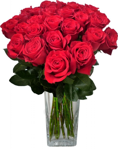 kytice růží k narozeninám Kytice k narozeninám   Kytice dle příležitosti   DarujteKvětinu.cz kytice růží k narozeninám