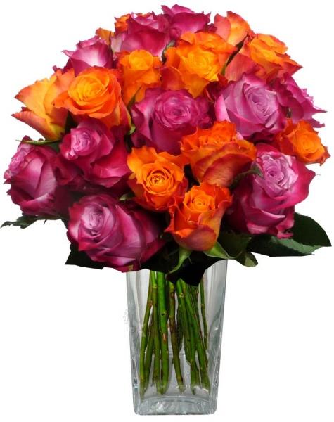 bouquet of mixed purple and orange roses darujtekv. Black Bedroom Furniture Sets. Home Design Ideas