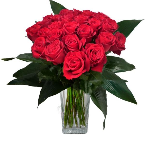 rudých růžíaussie seznamovací web
