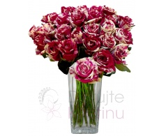 Bouquet of Harlequin roses