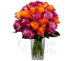 Bouquet of mixed purple and orange roses