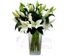 Bouquet of Lillies SG